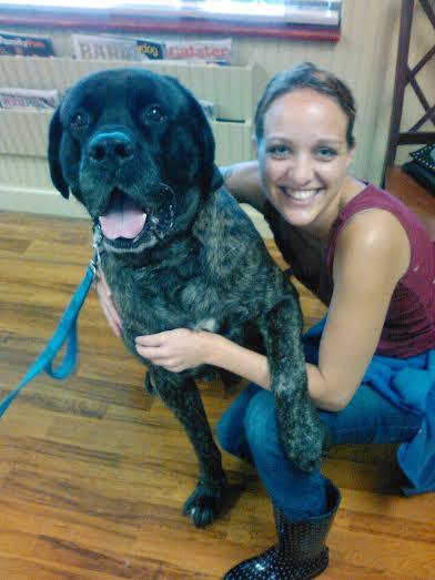 Pet First Animal Hospital - Veterinarian - Bradenton, FL