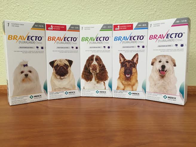 Bravecto is sold here at Pet First Animal Hospital in Bradenton, FL