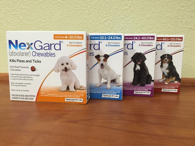 Nexguard is available for purchase at Pet First Animal Hospital in Bradenton, FL